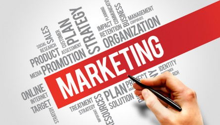 Esperto Marketing Perugia